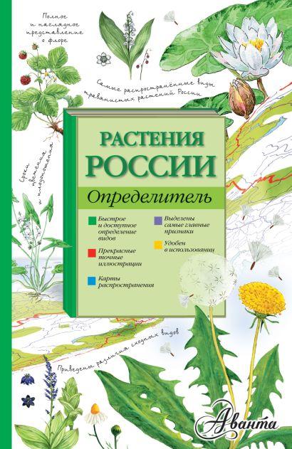 Растения России. Определитель - фото 1