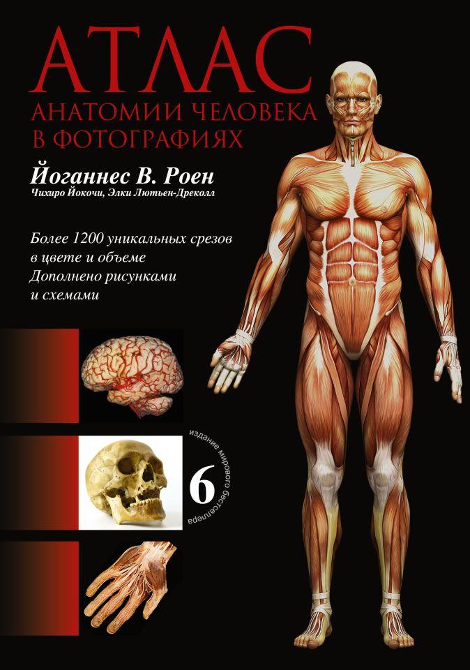 Роен Й.В. - Атлас анатомии человека в фотографиях обложка книги