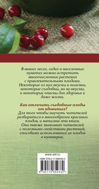 Ягоды и плоды. Карманный атлас Замятина Н.Г., Сергеева М.Н.