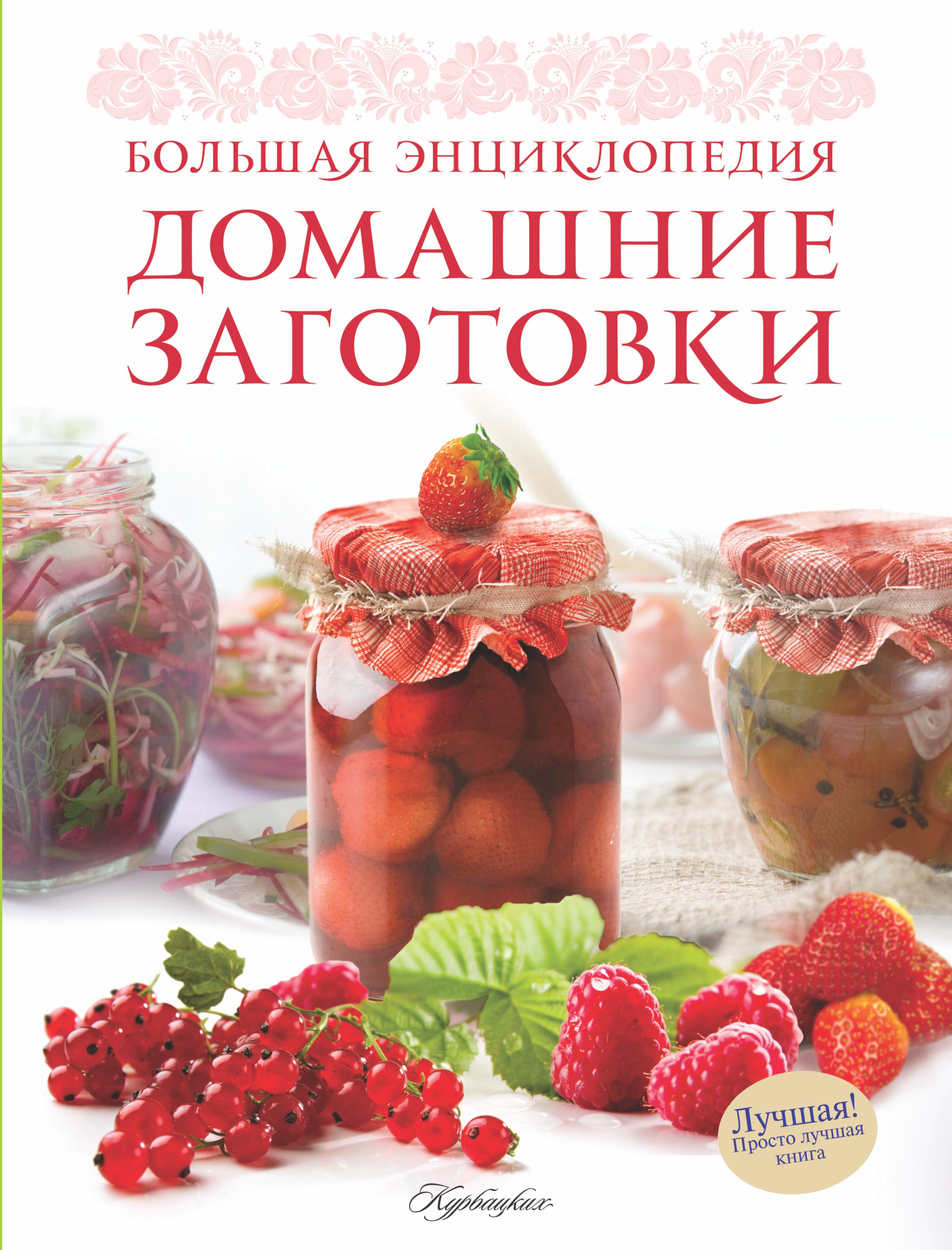 Ройтенберг И.Г. Домашние заготовки.Большая энциклопедия