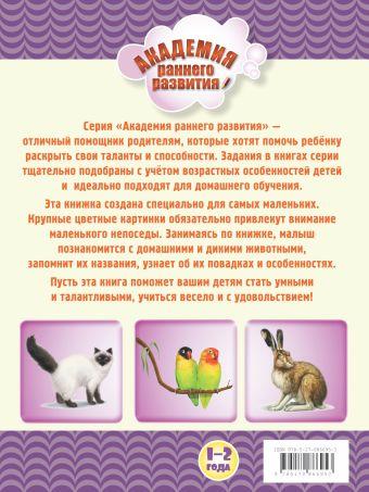Мир животных. Книжка первых знаний Олеся Жукова