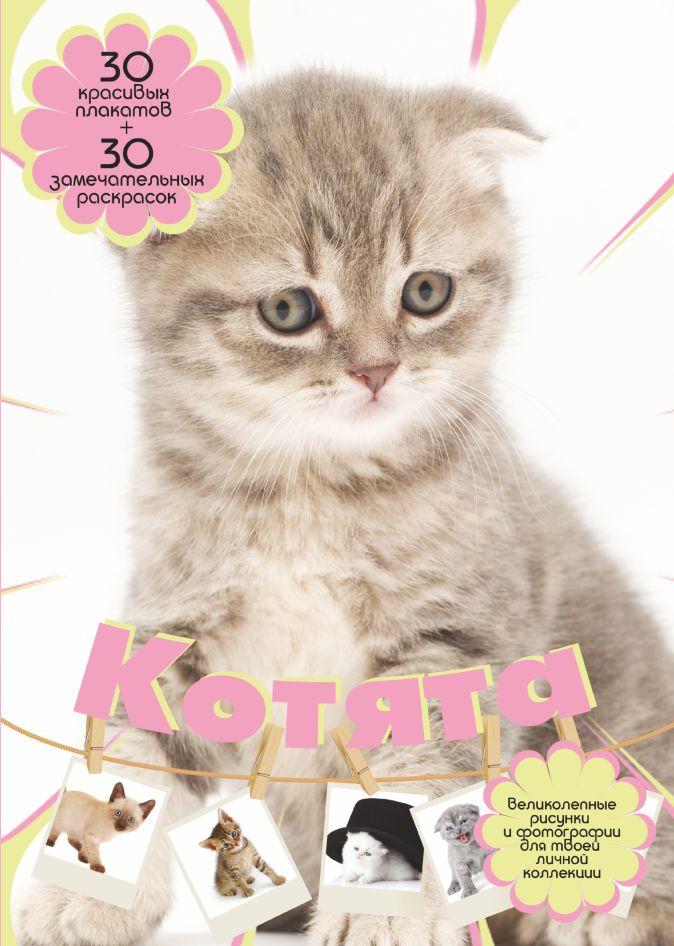 Торманова А.С. - Котята обложка книги