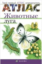 Бровкина Е.Т., Сивоглазов В.И. - Животные луга.Твой первый атлас-определ.' обложка книги