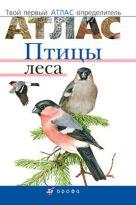 Бровкина Е.Т., Сонин Н.И - Птицы леса.Твой первый атлас-определитель.' обложка книги