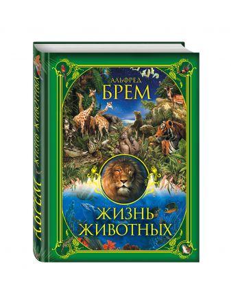 Альфред Брем - Жизнь животных обложка книги