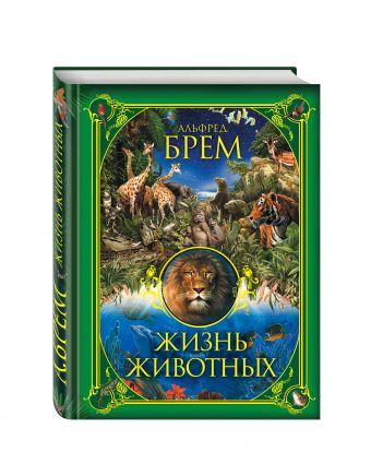 Жизнь животных Брем А.