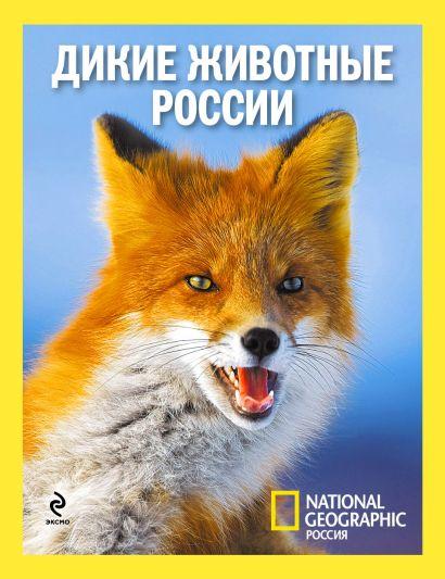 Дикие животные России - фото 1