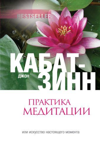 Практика медитации: В любое время, в любом месте Кабат-Зинн Д.