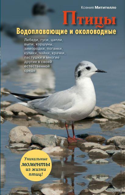Птицы. Водоплавающие и околоводные - фото 1