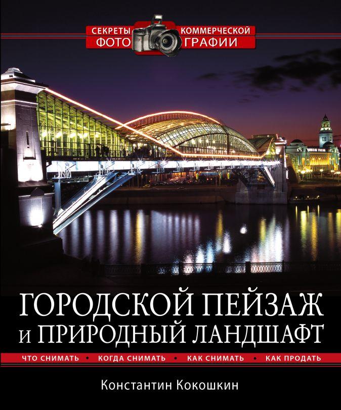 Кокошкин К.П. - Городской пейзаж и природный ландшафт обложка книги