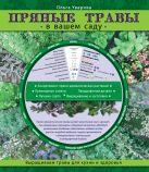 Уварова О. - Пряные травы в вашем саду (Садовые шпаргалки)' обложка книги