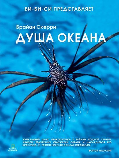 Душа океана - фото 1