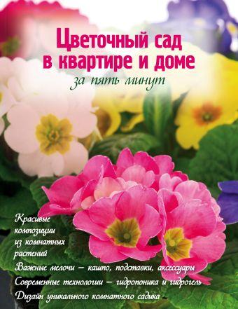 Цветочный сад в квартире и доме за пять минут Власова Н.