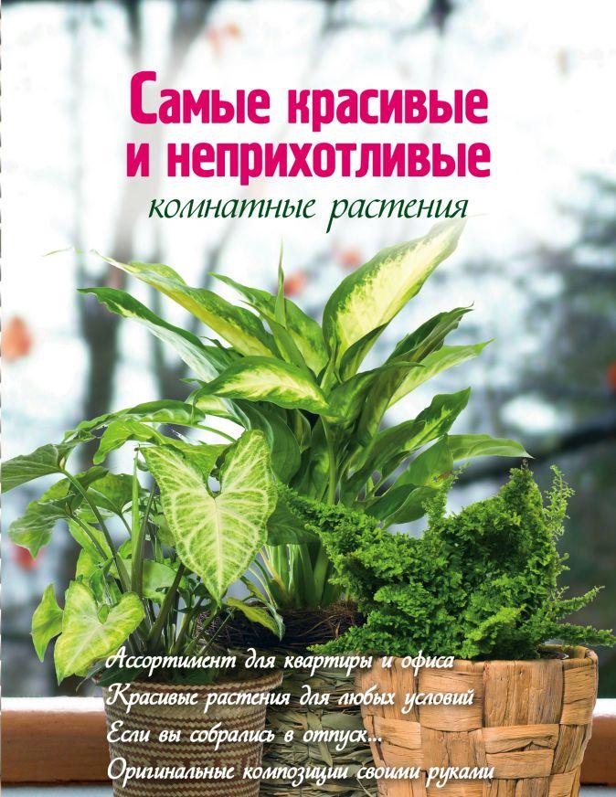 Волкова Е. - Самые красивые и неприхотливые комнатные растения (Вырубка. Цветы в саду и на окне) обложка книги
