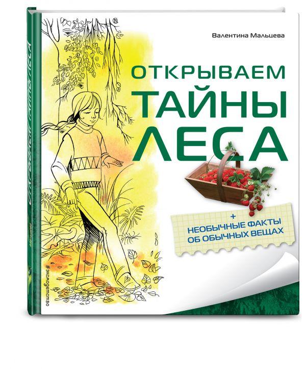 Открываем тайны леса Мальцева В.Е.