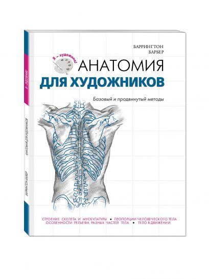 Анатомия для художников - фото 1