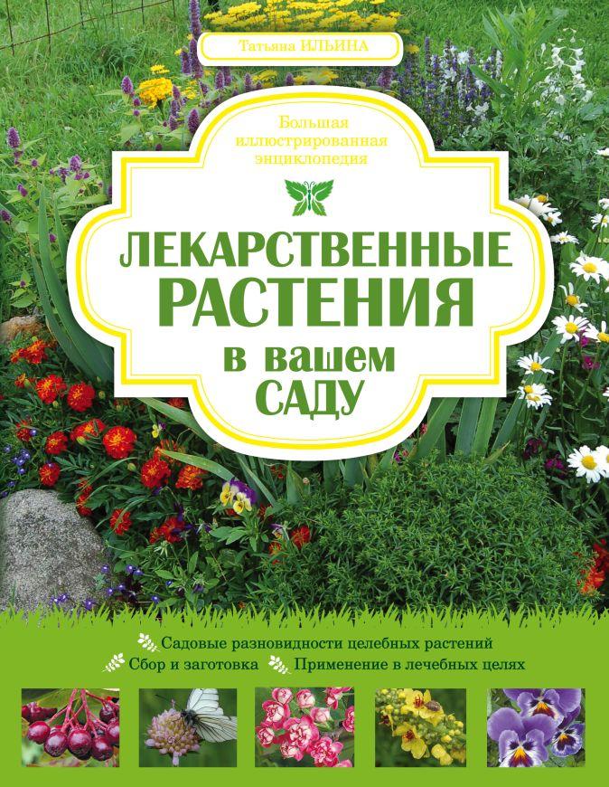 Ильина Т.А. - Лекарственные растения в вашем саду. Большая иллюстрированная энциклопедия обложка книги