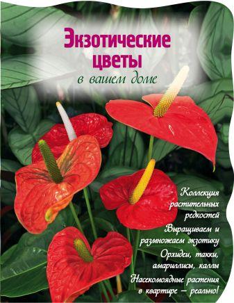 Власова Н. - Экзотические цветы в вашем доме (Вырубка. Цветы в саду и на окне) обложка книги