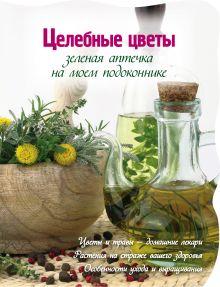 Зеленая аптека на моем подоконнике (Вырубка. Цветы в саду и на окне)