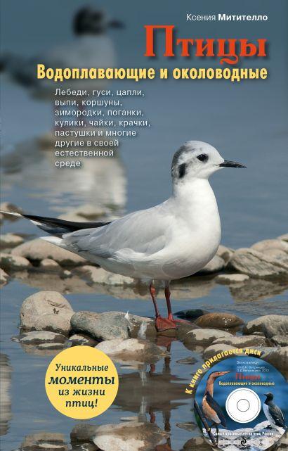 Птицы. Водоплавающие и околоводные (+CD) - фото 1