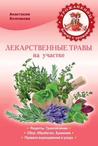Колпакова А.В. - Лекарственные травы на вашем участке обложка книги