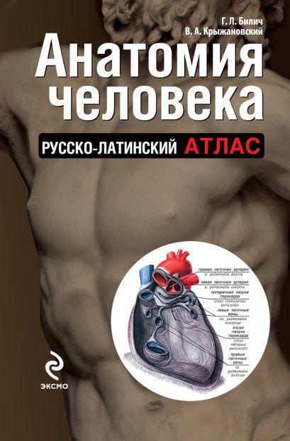 Анатомия человека: русско-латинский атлас - фото 1