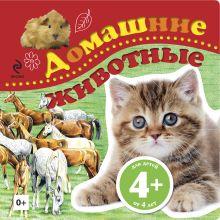 4+ Домашние животные