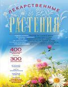 Заостровская Е.Ю. - Лекарственные растения (оформление 1)' обложка книги
