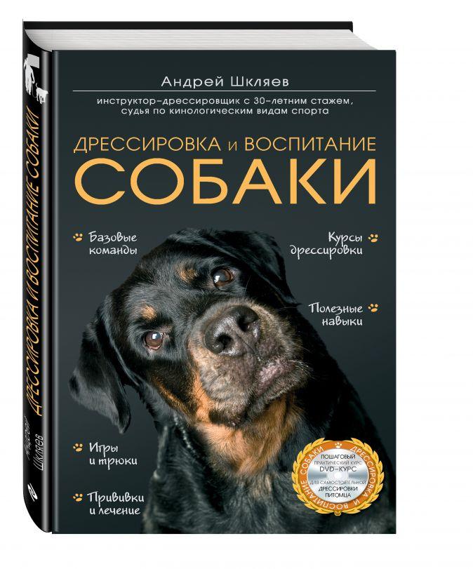 Шкляев Андрей Николаевич - Дрессировка и воспитание собаки (+DVD) обложка книги