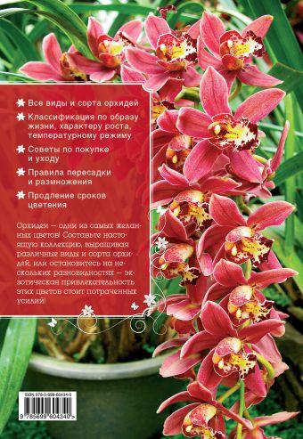 Самые красивые орхидеи (Все о вашем саде) Ирина Зайцева