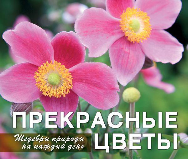 Прекрасные цветы. Шедевры природы на каждый день