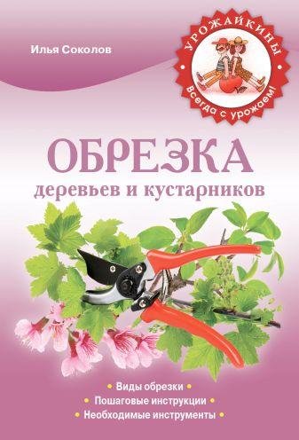 Соколов И.И. - Обрезка деревьев и кустарников обложка книги