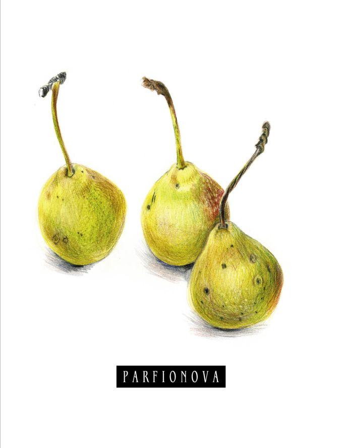 Парфенова Т.В. - Блокнот для записей «Груши» обложка книги