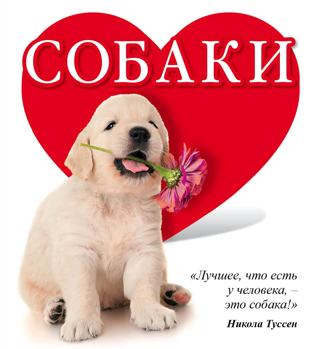 Гюнтер Е.Е. Собаки эксмо собаки подарок для всех кто обожает собак