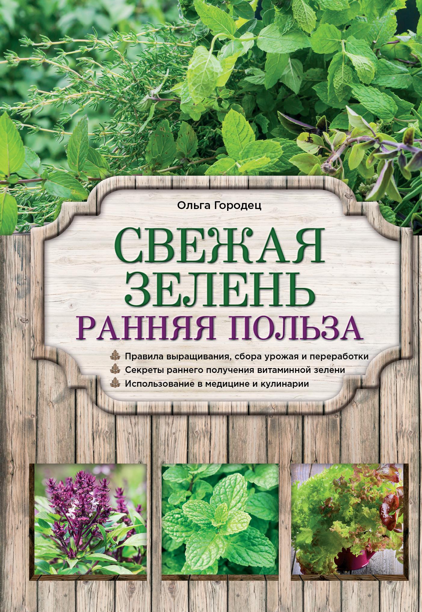Ольга Городец Свежая зелень: ранняя польза