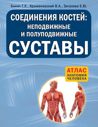 Соединения костей: неподвижные и полуподвижные суставы - фото 1