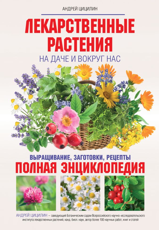 Цицилин А.Н. - Лекарственные растения на даче и вокруг нас обложка книги