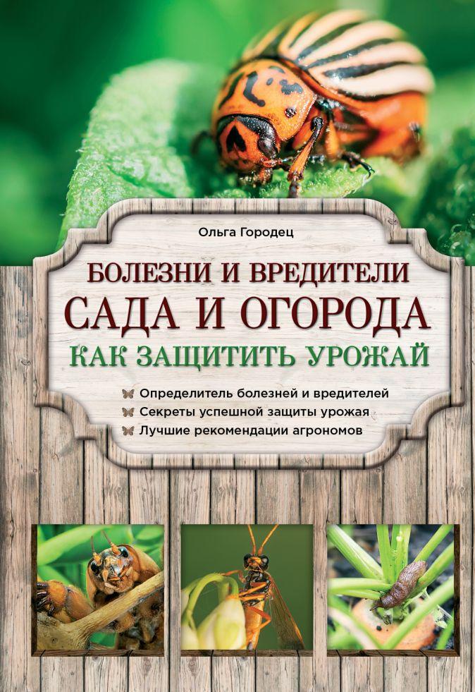 Городец Ольга - Болезни и вредители сада и огорода. Как защитить урожай обложка книги