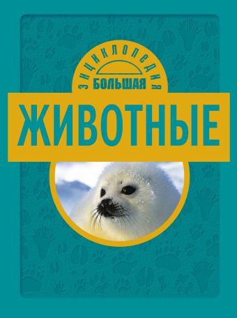 10+ Животные Джудичи К., Каневаро С., Ратто С.