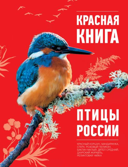 Красная книга. Птицы России - фото 1