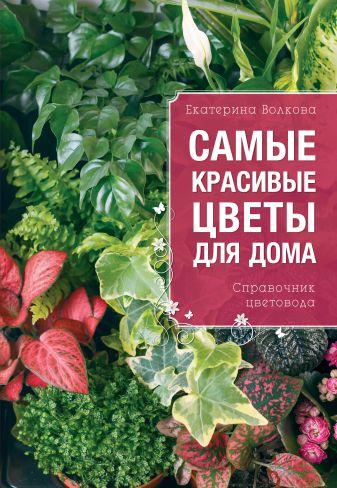 Екатерина Волкова - Самые красивые цветы для вашего дома обложка книги