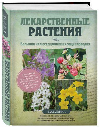 Лекарственные растения. Большая иллюстрированная энциклопедия Ильина Т.А.