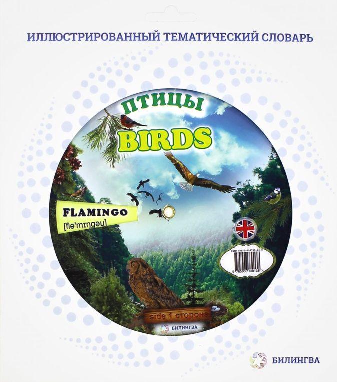 Билингва - Тематический словарь  BIRDS обложка книги