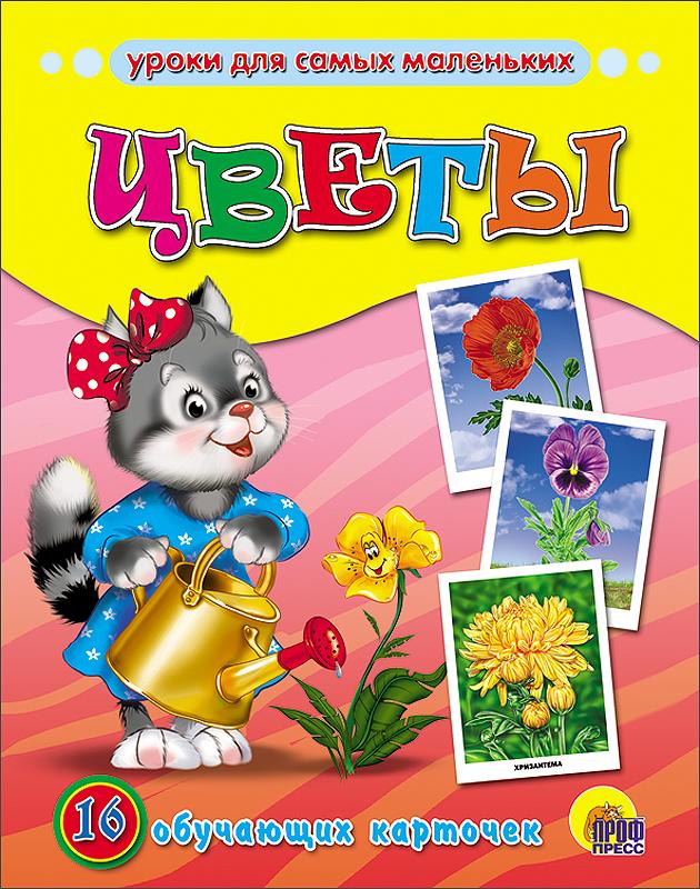 Цветы цветы хищники фото и названия