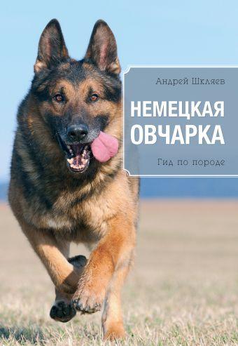Немецкая овчарка Шкляев А.Н.