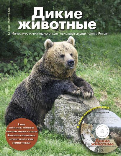 Дикие животные: Иллюстрированная энциклопедия обитателей средней полосы России (+CD) - фото 1