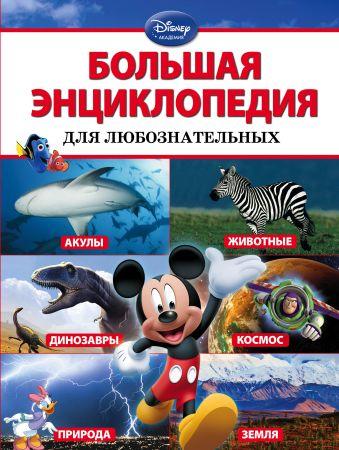 Большая энциклопедия для любознательных