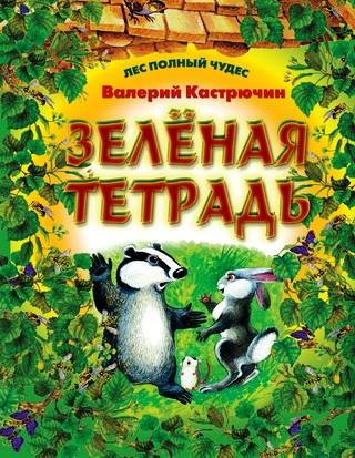 Кастрючин В. - Зеленая тетрадь обложка книги