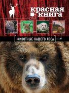 Очеретний А.Д. - Красная книга. Животные нашего леса' обложка книги