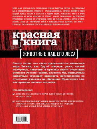 Красная книга. Животные нашего леса Очеретний А.Д.